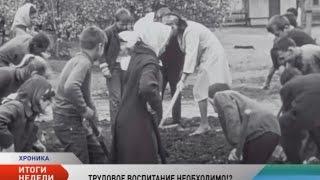 Нужен ли российским школьникам новый закон о трудовом воспитании?