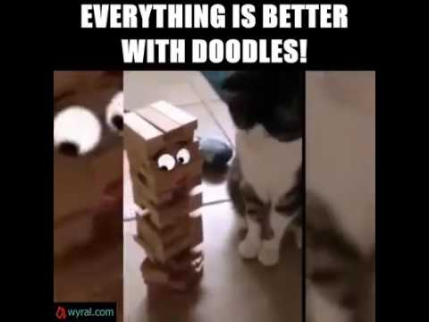 Everything is better with Doodles