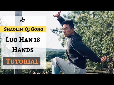 Shaolin Qi Gong - Luo Han 18 Hands   Arhat 18 hands  KungFu