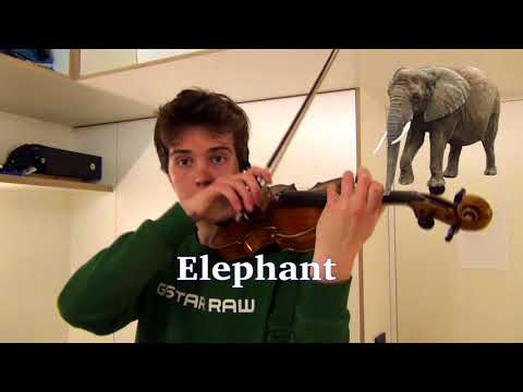 Animal sounds on violin