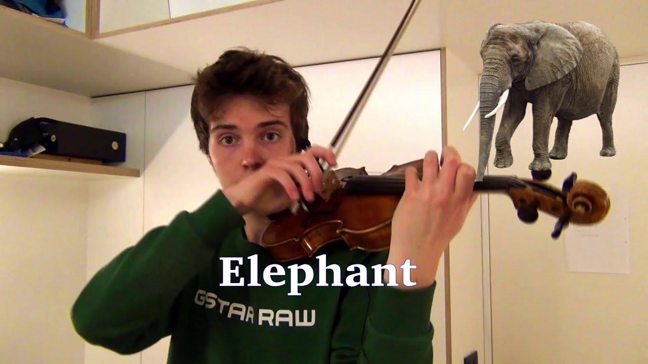 Animal sounds on violin