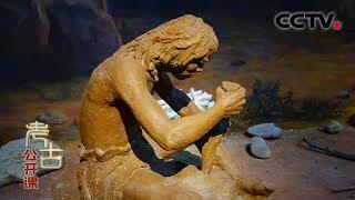 《考古公开课》 重返石器时代 20200329 | CCTV科教