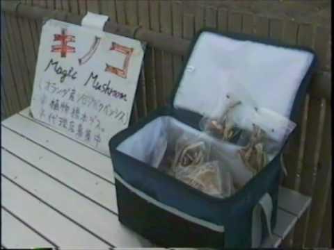 Magic Mushrooms Japan.mov