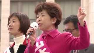 日本共産党大阪二区地区副委員長山本陽子 11月20日なんばでの訴え.