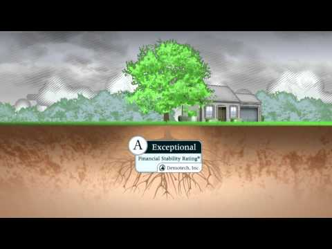 Florida Homeowners Insurance Commercial - Southern Oak Insurance