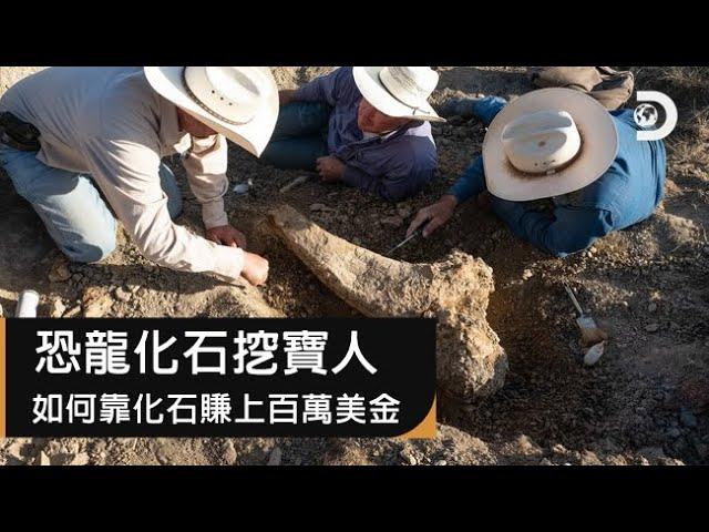 尋找恐龍化石就像在抓寶!?CGI動畫重現恐龍時代,如何靠挖化石賺上百萬美金:《恐龍化石挖寶人》