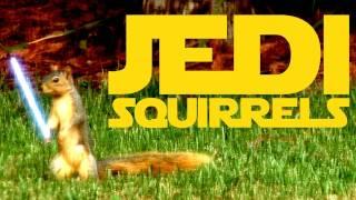 Jedi Squirrels Thumbnail