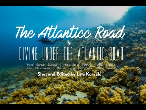Diving Under the Atlantic Road | Underwater Paradise