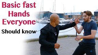 Basic fast hands everyone should know | wing chun