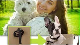Сумка-переноска для маленьких собак Ferplast WITH ME