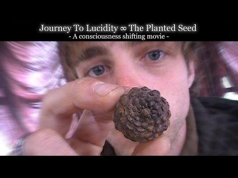 [Full Movie] Journey to Lucidity: The Planted Seed. (A Consciousness Shifting Saga)