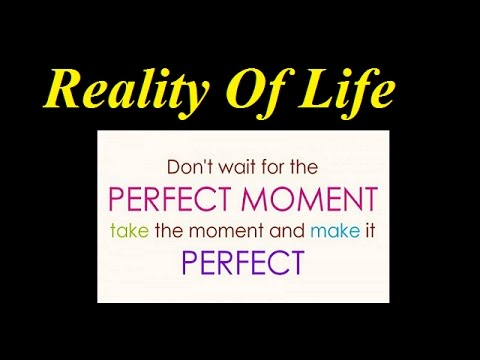 Reality Of Life Superb Quotes It Means A Lot Youtube