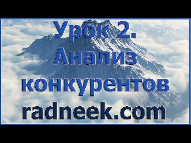 2. Сео анализ и аудит сайта, seo текста самостоятельно и легко Radneek