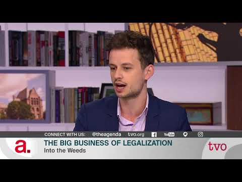 The Big Business of Legalization
