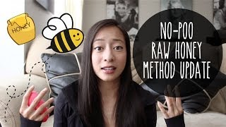 No-Poo | Raw Honey Method Update!