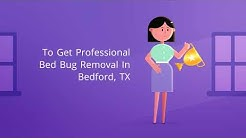 OCP Bed Bug Exterminator Bedford, TX - Bee Removal