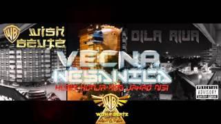Video VECNA NESANICA - KUDIS KONJA KOG JAHAO NISI (2016) download MP3, 3GP, MP4, WEBM, AVI, FLV April 2018
