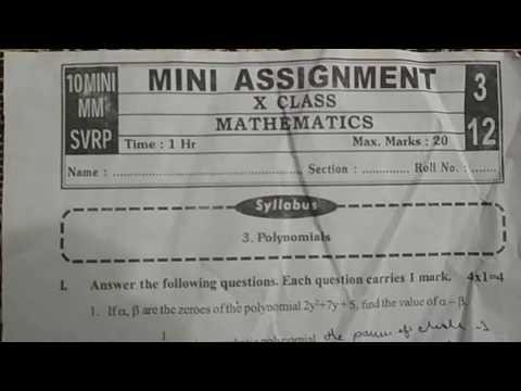 10th Class Mini Assignment Mathematics Subject Model Test Paper