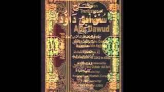 Sunan Abu Dawud  Sh/ Hassen Abdallah part 12