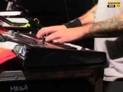 NOFX  Radio Rancid   @ Sherwood Festival  Padova 2013