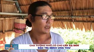 CHA TƯỜNG NHỔ CỎ CHO CÂY XẠ ĐEN (ĐẶC TRỊ UNG THƯ - 23.04.2018) | Cha Phêrô Nguyễn Văn Tường
