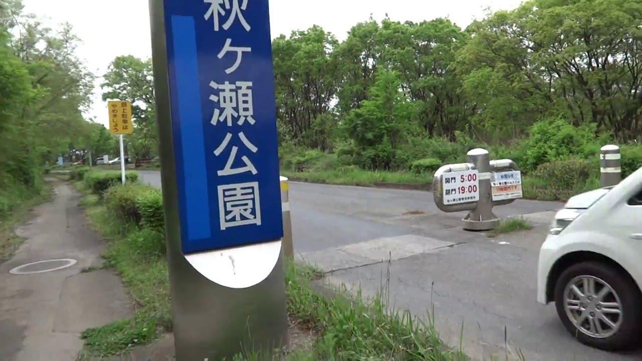 秋ヶ瀬 公園 現在
