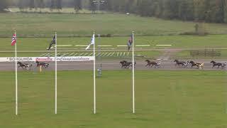 Vidéo de la course PMU PRIX LOPP 7
