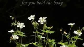 Ease Him Down - Rachel Steele- Lyric Video