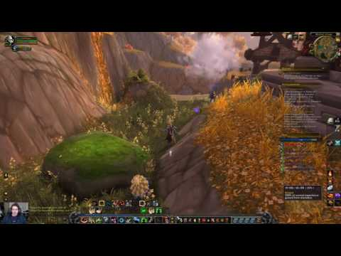 Pet battle leveling guide - 1-100 Level pets and alts World of Warcraft
