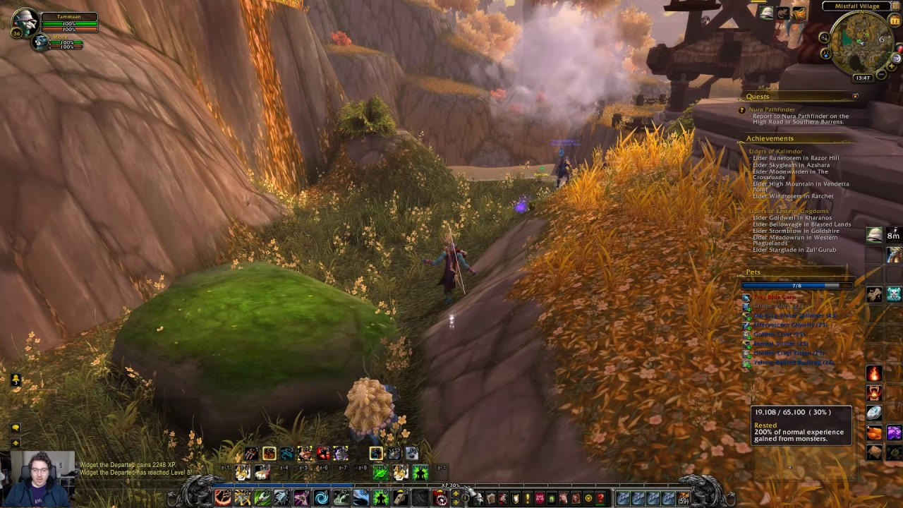pet battle leveling guide 1 100 level pets and alts world of rh youtube com Vanilla WoW Leveling Guide WoW Profession Leveling Guide