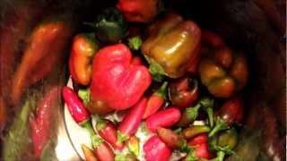 "Making Homemade ""tabasco"" Hot Sauce"