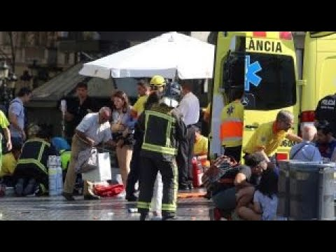 Why are terror attacks in Europe on the rise?