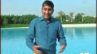 Dubai property special