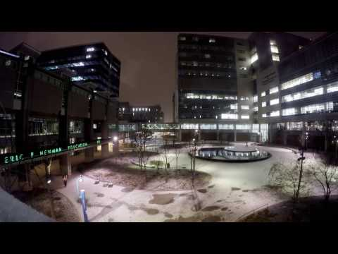 Time lapse: Light snow falling on Hope Plaza