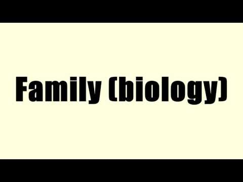 Family (biology)