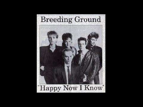 BREEDING GROUND - Happy Now I Know - 7 inch single