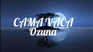 Ozuna- Cama Vacía ( Lyrics /  letra / English Version )| English translation Video