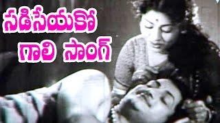 Raja Makutam Songs - Sadiseyako Gaali - N.T. Rama Rao, Kannamba, Rajasulochana, Gummadi
