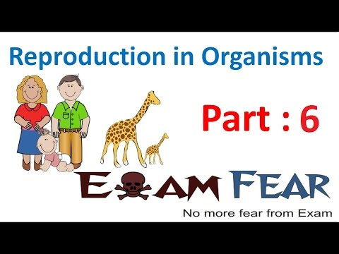 Biology Reproduction in Organisms part 6 (Natural Vegetative Propogation) class 12 XII