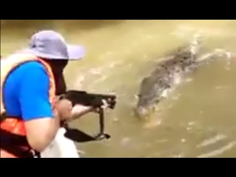Thumbnail: Crocodile Executed With Shotgun for Killing Fisherman in Borneo