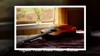 Người Tình Trăm Năm Guitar
