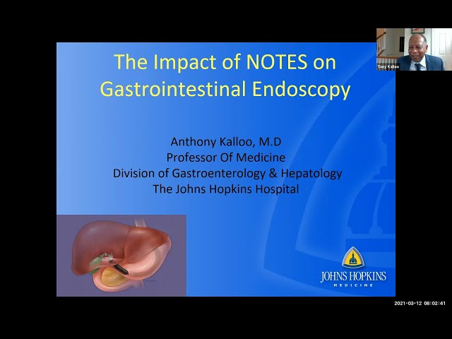 The Impact of NOTES on Gastrointestinal Endoscopy