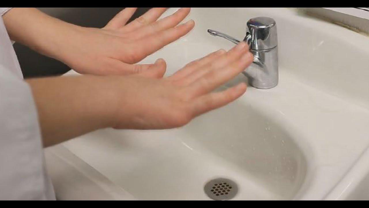 Parte 2: Salud e Higiene
