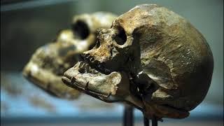 Inna Historia Świata: Nieznane pochodzenie ludzkości