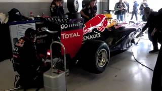 F1 Alain Prost Red Bull Garage Silverstone 2014 -- by John Foti GPIF