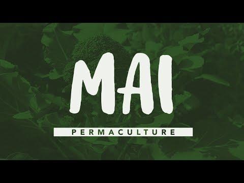 que faire au jardin en mai permaculture agrocologie - Quoi Faire Au Jardin