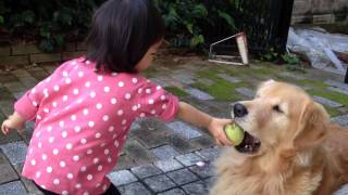 Hi,there! how are you? Do you know my golden retriever? and my daug...