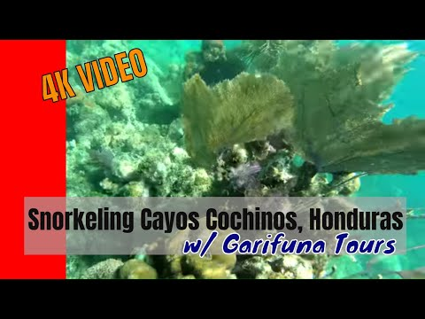 Snorkeling Cayos Cochinos Honduras with Garifuna Tours
