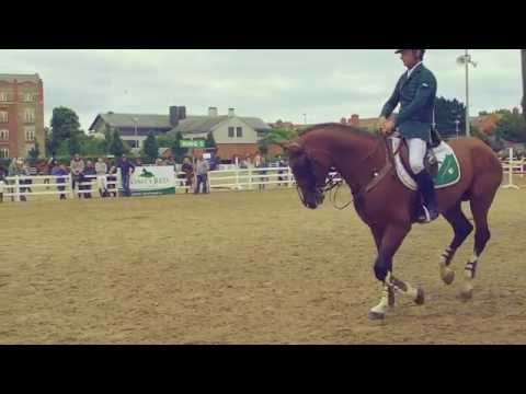 Dublin Horse Show 2016