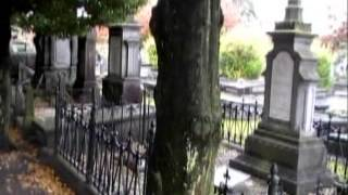 Begraafplaats Molenstraat Helmond Netherlands